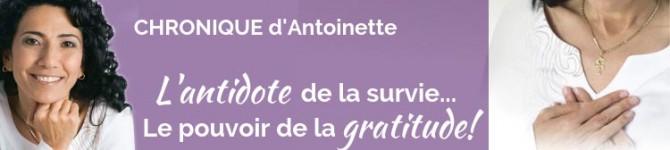 L'antidote de la survie… Le pouvoir de la gratitude!